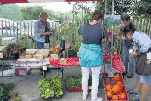 WGTC in het Heemsteeds Nieuwsblad vanwege de Boerenmarkt in Heemstede